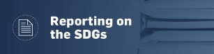 Reporting on the SDGs