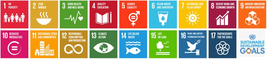 SDG Pioneers   UN Global Compact